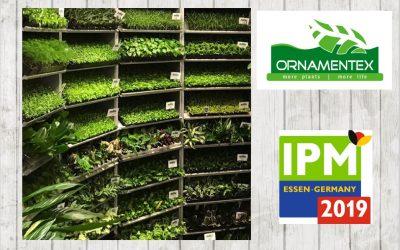 Visit us @ IPM Essen